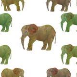 Elefante Acuarela inconsútil animal del modelo del extracto en fondo gris stock de ilustración