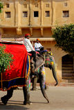Elefante adornado con los modelos pintados tradicionales Fotografía de archivo