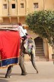 Elefante adornado con los modelos pintados tradicionales Imagenes de archivo