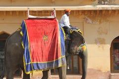 Elefante adornado con los modelos pintados tradicionales Fotografía de archivo libre de regalías