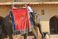 Elefante adornado con los modelos pintados tradicionales Imágenes de archivo libres de regalías