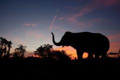 Elefante asiático en la puesta del sol fotografía de archivo