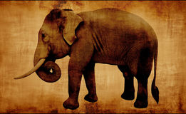 Elefante asiático masculino Fotos de Stock