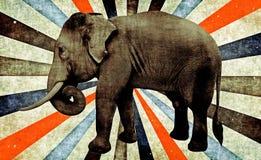 elefante asiático masculino, Imagem de Stock