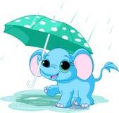 Elefante bonito do bebê sob o guarda-chuva Imagem de Stock