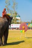 Elefante che gioca la parte posteriore degli aerostati dei dardi fotografia stock