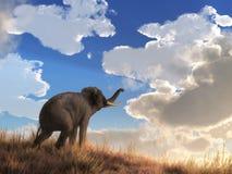 Elefante che guarda l'alba illustrazione vettoriale