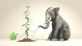Elefante che innaffia una pianta Immagini Stock