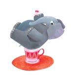 Elefante che si siede su una tazza Immagini Stock