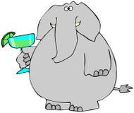 Elefante com uma Margarita Imagens de Stock Royalty Free