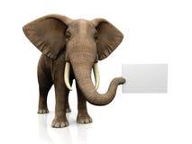 Elefante con il segno Fotografie Stock Libere da Diritti