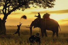 Elefante con l'agricoltore Fotografia Stock Libera da Diritti