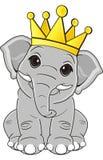 Elefante con la corona Fotografie Stock