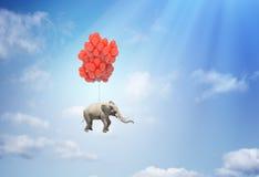 Elefante con los globos fotografía de archivo