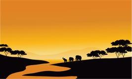 Elefante da família da silhueta no rio Fotografia de Stock Royalty Free