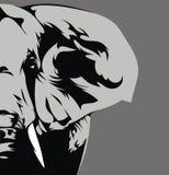 Elefante cinzento Imagem de Stock Royalty Free