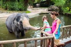 Elefante de la alimentaci?n de los ni?os en parque zool?gico Familia en el parque animal foto de archivo libre de regalías