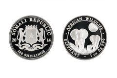 Elefante de la fauna del africano de la moneda de plata 1oz 2014 de la República de Somalia Foto de archivo