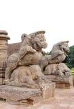 Elefante de la guerra del león que calma en la entrada Imagen de archivo