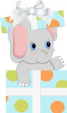 Elefante del bambino in contenitore di regalo di compleanno Immagine Stock Libera da Diritti