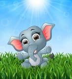 Elefante del bebé de la historieta que se sienta en la hierba en un fondo de la sol brillante libre illustration