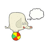 elefante del circo de la historieta con la burbuja del pensamiento Foto de archivo