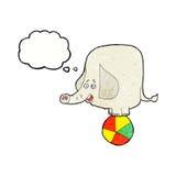 elefante del circo de la historieta con la burbuja del pensamiento Fotografía de archivo libre de regalías