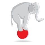 Elefante del circo en la bola stock de ilustración