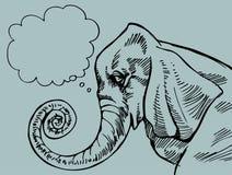 Elefante di pensiero Immagini Stock