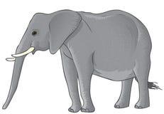 Elefante di vettore Fotografia Stock