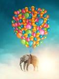 Elefante di volo Fotografie Stock