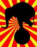 Elefante do circo Imagem de Stock