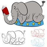 Elefante do circo que lê um livro Imagem de Stock Royalty Free