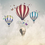 Elefante do voo foto de stock