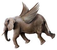 Elefante do voo do divertimento com as asas isoladas foto de stock royalty free
