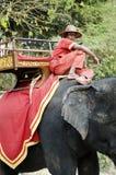 Elefante e driver in Angkor Wat Cambogia Fotografie Stock Libere da Diritti