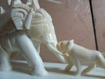 Elefante e tigre do osso da caça Fotos de Stock