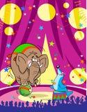 Elefante e un vitello del mare del circo royalty illustrazione gratis