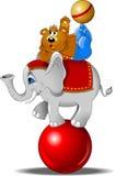 Elefante ed orso Fotografia Stock Libera da Diritti