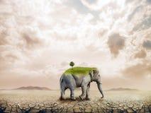 Elefante en el desierto stock de ilustración