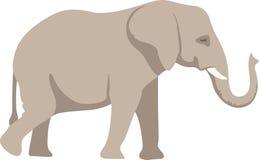 Elefante grande Imágenes de archivo libres de regalías