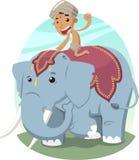 Elefante indiano da equitação do menino, Fotos de Stock Royalty Free