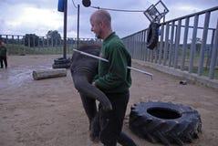 Elefante indiano del bambino e custode di zoo Inghilterra 2013 Fotografie Stock
