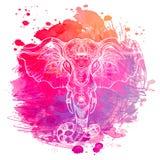 Elefante indiano sopra il fondo dell'acquerello Arte del tatuaggio, yoga Ha royalty illustrazione gratis