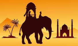 Elefante indio Fotos de archivo libres de regalías