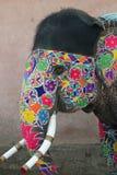 Elefante indio adornado Fotos de archivo libres de regalías
