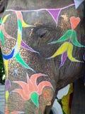 Elefante, Jaipur, India Fotografie Stock Libere da Diritti