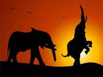 Elefante junto Imagens de Stock Royalty Free
