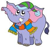 Elefante na roupa do inverno Foto de Stock Royalty Free