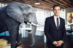 Elefante na sala Imagens de Stock